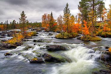 Trappstegsforsen, Saxnas, Lappland, Sweden.
