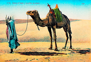 Praying in the Sahara desert (postcard c.1900), France