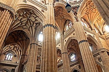 New Cathedral, interior, 16th century, Salamanca, Region of Castilla y Leon, Spain, Europe.