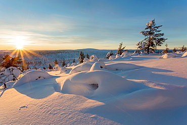 Winter landscape on mount Hirvas in February in direct light in afternoon sunlight in Gallivare, swedish lapland.