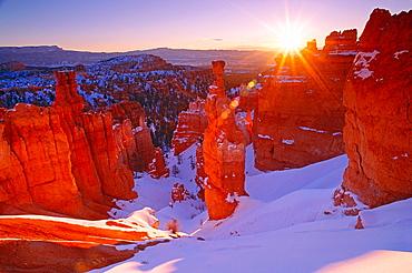 Winter sunrise on Thor's Hammer, Bryce Canyon National Park Utah USA.
