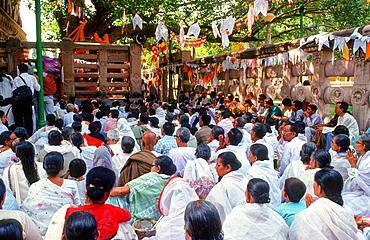 pilgrims pray at the sacred Mahabodhi temple at Bodhgaya, India