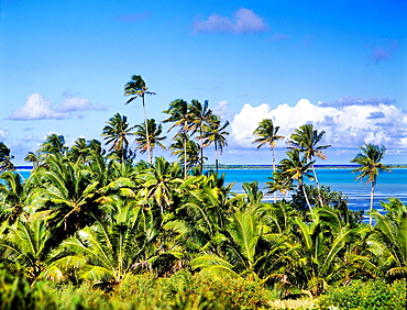 Cook Islands, Aitutaki, island landscape.