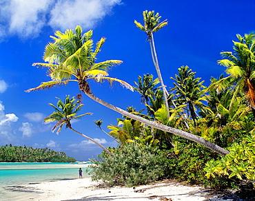 Cook Islands, Aitutaki, Motu Tapuaetai, One Foot Island at Aitutaki Lagoon.
