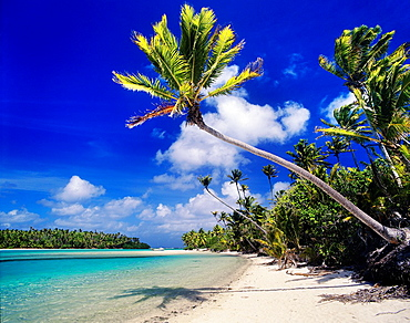 Cook Islands, Aitutaki, Motu Tapuaetai, One Foot Island at Aitutaki Lagoon.