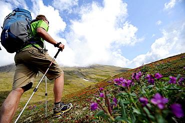 Man on hiking trip