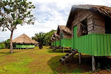 South America ,Brazil, Amazonas state, Manaus, Amazon river basin, Cobra Cabana.