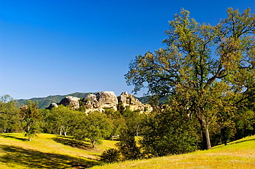 Oak trees, green hills, and rock outcrop in spring, Ventana Wilderness, Los Padres National Forest, California.