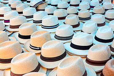 Panama hat, France Square, Panama City, Panama, Central America, America