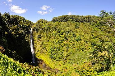 Akaka Falls in the Akaka Falls State Park, Big Island, Hawaii, USA.