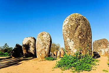 Cromlech Dos Almendres, ancient neolithic, -Alto Das Pedras Talhas-, Nossa Senhora de Guadalupe, Valverde, Evora, Alentejo, Portugal, Europe.