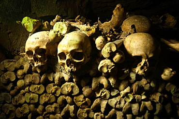 Inside the catacombs, Paris, France.