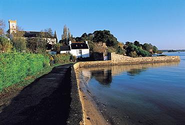 France, Brittany, Morbihan, Golfe du Morbihan, Ile aux Moines, Locmiquel