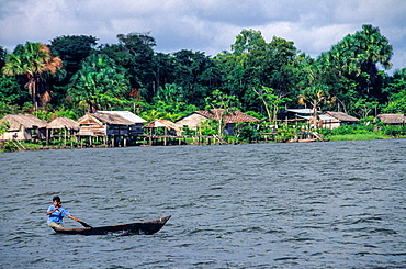 Guayo. Orinoco delta. Venezuela.