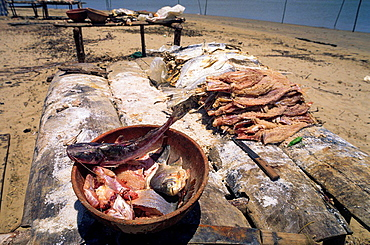 Drying fish. Orinoco Delta. Venezuela.
