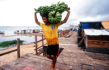 Confluence Of The Amazonas And Tapajos Rivers, Port, Unload Bananas, Santarem, State Of Para, Amazon Region, Brazil, South America.
