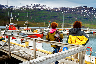 Fishing port. Seydisfjordur. Iceland, Europe.