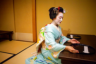 maiko' (geisha apprentice)working in a tea house.Geisha's distric of Pontocho.Kyoto. Kansai, Japan.