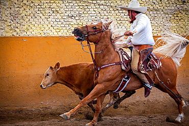A charreada Mexican rodeo at the Lienzo Charro Zermeno, Guadalajara, Jalisco, Mexico.