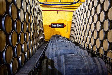 Maturation barrels, Jose cuervo tequila distillery in tequila village, Mexico.