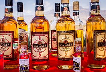 Tequila Bacabes, Penjamo, Guanajuato, Mexico.