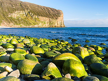 Beach of Rackwick Bay island of Hoy, Orkney Islands. europe, central europe, northern europe, united kingdom, great britain, scotland, northern isles,orkney islands, June.