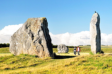 Avebury Neolithic henge and stone circles, Wiltshire, England. 5600 years old. Megaliths of the inner North Circle.