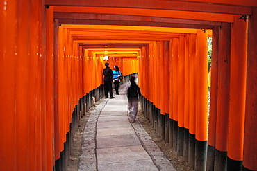 Fushima Inari Shrine With Thousands of Torii Gates. Japan