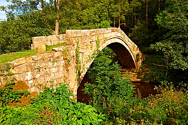 The narrow Beggars bridge (1620) built by Alderman Thomas Ferris as a memorial to his wife Agnes. North Yorks National Park, North Yorkshire, England.