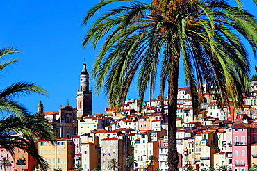 Europe, France, Alpes-Maritimes, Menton. The city and the Saint Michel Basilica.
