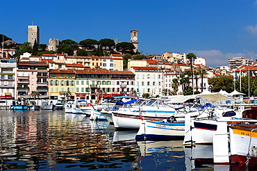 Europe, France, Alpes-Maritimes, Cannes. The harbor and old city.