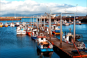 Akranes, port town and municipality on the west coast of Iceland, Western regions, Vesturland, Iceland.