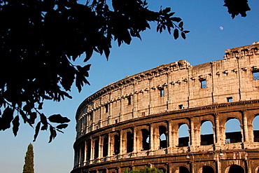 the colosseum in rome italy.
