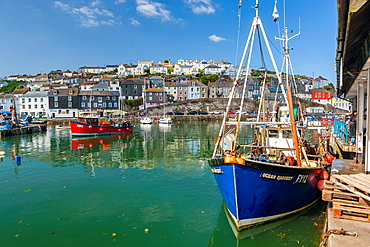 Sailing boats in harbor, Mevagissey, Cornwall, England, United Kingdom.