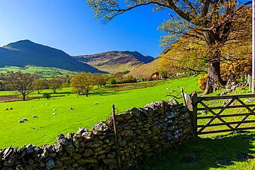 Keskedale Valley, Lake District National Park, Cumbria, England, UK, Europe.