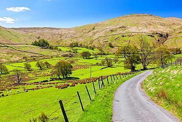 Cumbrian landscape near Dockray, Lake District National Park, Cumbria, England, UK, Europe.