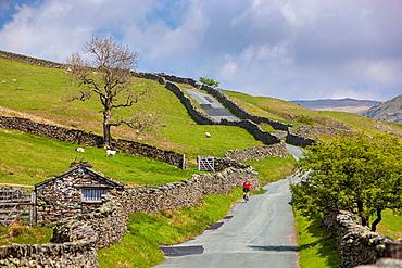 Kirkstone road, Lake District National Park, Cumbria, England, UK, Europe.