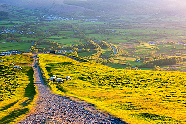 View from Latrigg Fell, Lake District National Park, Cumbria, England, UK, Europe.