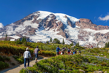 Mount Rainier National Park, Washington.