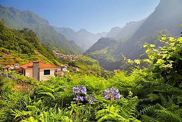 Landscape view near Santana, Madeira, Portugal.