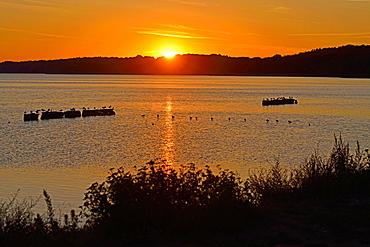 Sunset at Kamminke, Usedom Island, Germany.