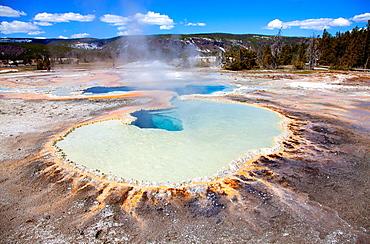 Upper Geyser Basin, Yellowstone National Park, Wyoming/Montana, Idaho, USA