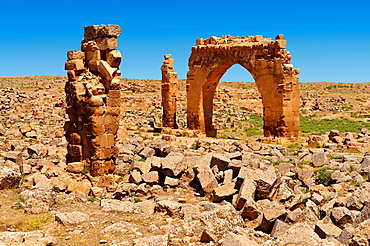 Pictures of the the ruins of the 8th century University of Harran, south west Anatolia, Turkey. Harran was a major ancient city in Upper Mesopotamia, Turkey