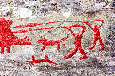 Rock engraving at Himmelstalund one of Sweden's biggest collection of petroglyphs with more than 1660 pictures. Bronze age 1800-500 B.C.