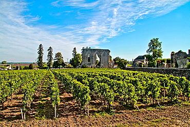 Village of Saint Emilion in the Bordeaux Wine-Growing Region, France.