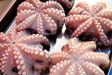 Malta, Marsaxlokk, fish market, octopus.