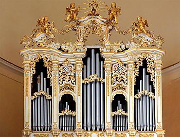 Italy, Sicily, Noto, San Carlo Church, interior, organ.