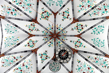 Netherlands, Haarlem, St Bavo Church, interior, ceiling.