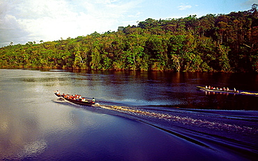 Aerial view of tourist boats going up Carrao river. Canaima National Park, Bolivar State, Southern Venezuela.