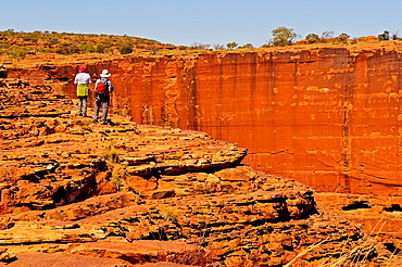 Kings Canyon, Watarrka National Park, Northern Territory, Australia, Oceania.